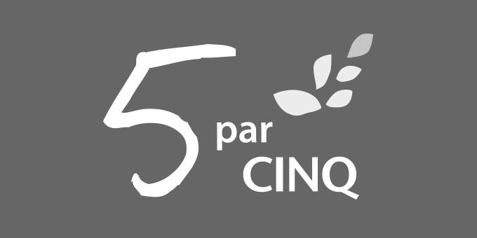 Visuel - 5parcinq.fr