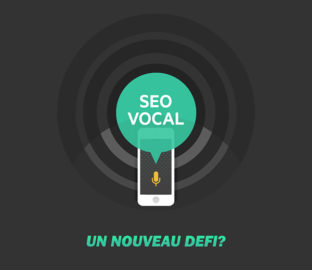 SEO vocal entete